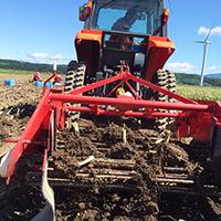 2015年収穫風景2